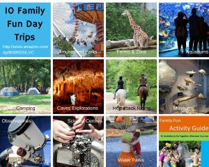 10 Family Fun Day Trips